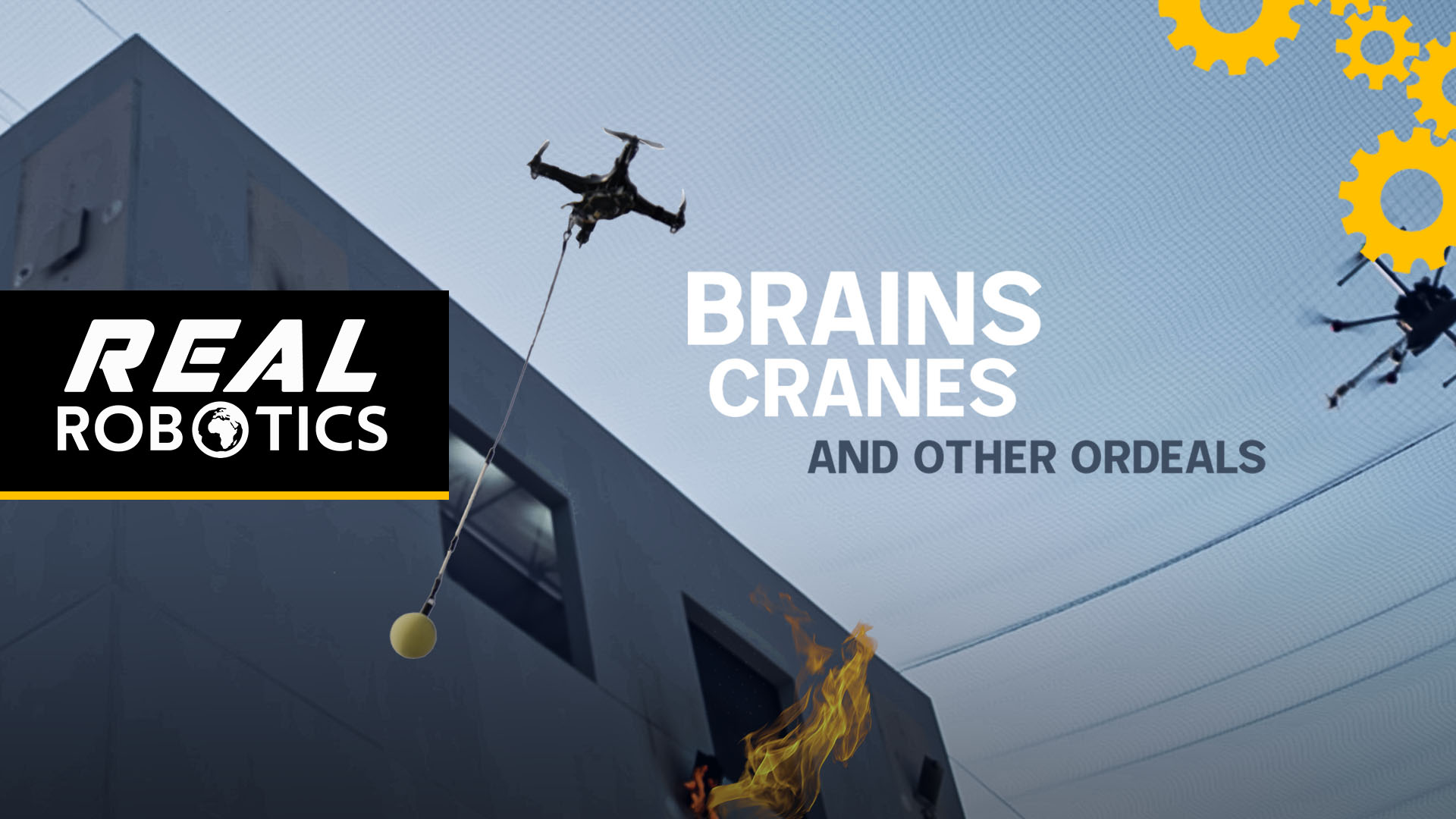 Brains, Cranes and Other Ordeals